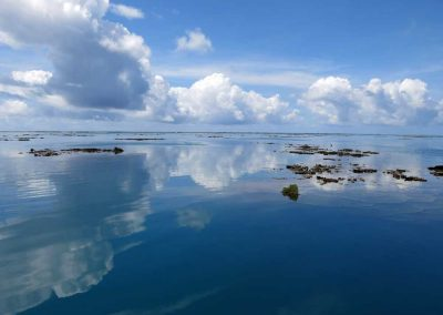 Kiribati Strategic Advice – Phoenix Islands Protected Area