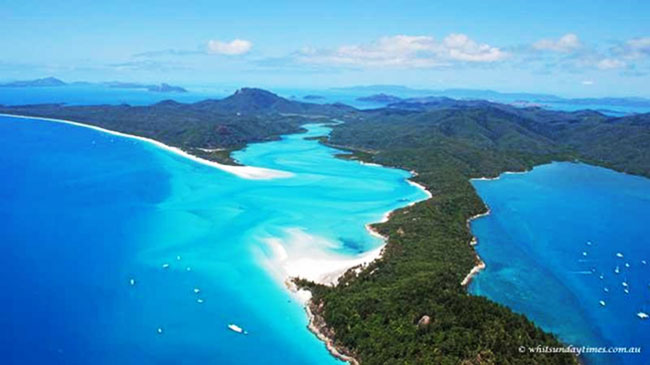 Whitsundays Reef Recovery and Public Art Project