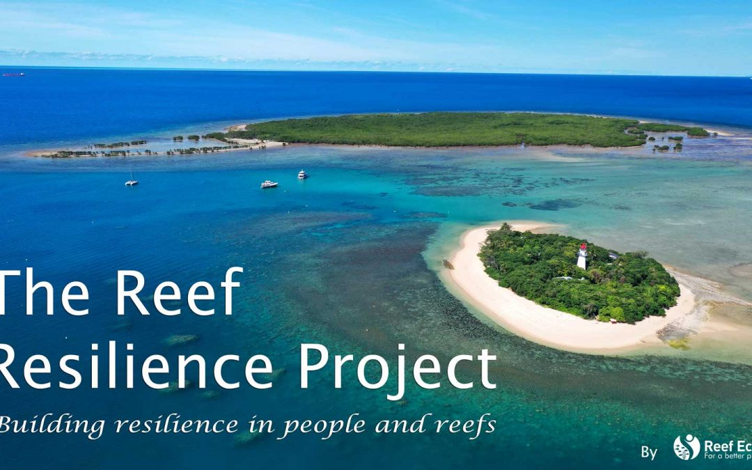 The Reef Resilience Project