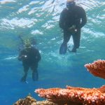 AA-fellows-snorkelling-on-the-GBR-16x9-sml